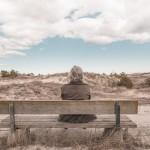 man-seating-on-bench