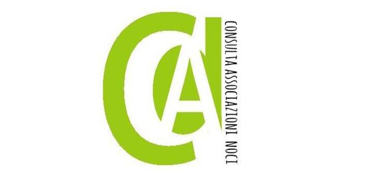 Consulta delle Associazioni, rinnovo delle cariche