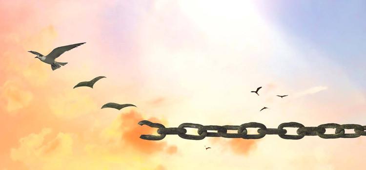 Incertezza e insoddisfazione, economia e libertà