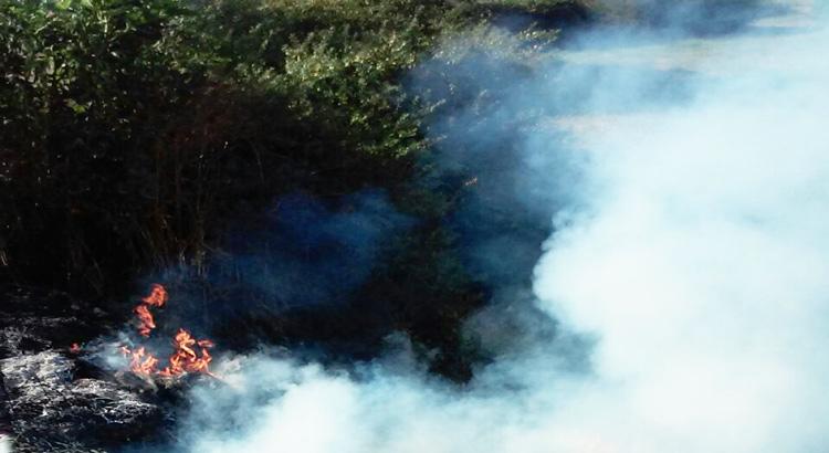 incendio-sterpaglie-particolare