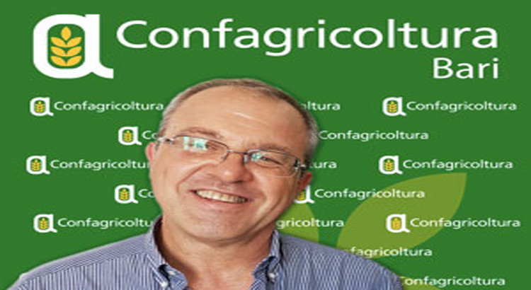 """Nuovo contratto operai agricoli, Lacenere: """"questo accordo soddisfa tutte le parti interessate"""""""