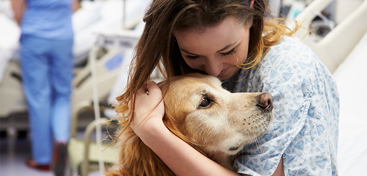 Pet Therapy: quando l'animale aiuta l'uomo