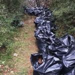 puliamo-buio-rifiuti-raccolti