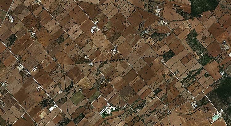 """Immagine satellitare: suddivisione del territorio in """"partite"""" nei pressi di Bonelli (in basso al centro)"""
