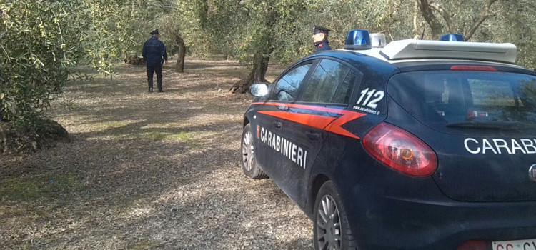 Reati contro il patrimonio, Carabinieri sventano furto in appartamento