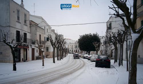 Emergenza maltempo: Noci nella morsa del gelo