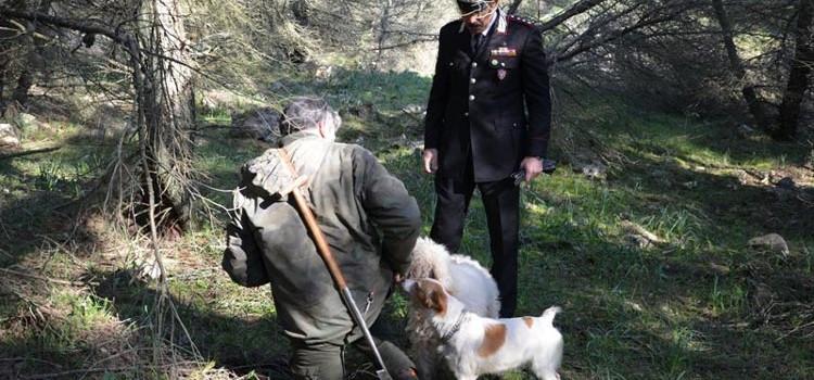 Parco Alta Murgia: scoperti falsi tesserini per raccogliere tartufi