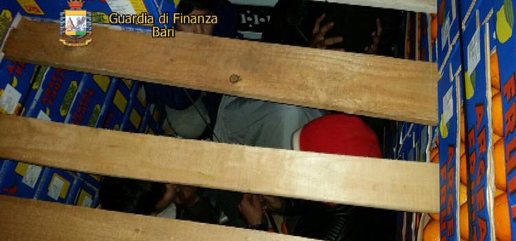 Quattro clandestini tra le arance, arrestati due camionisti stranieri