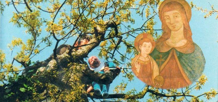 """""""Il guaio"""" della Madonna (della Croce): il rito di guarigione dell'ernia infantile"""
