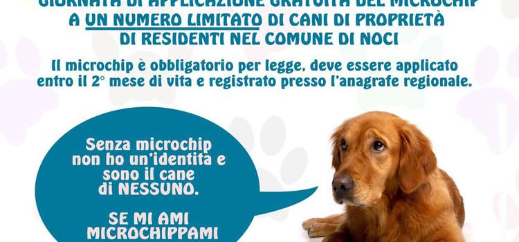 SOS Adozioni4zampe: domenica microchip day