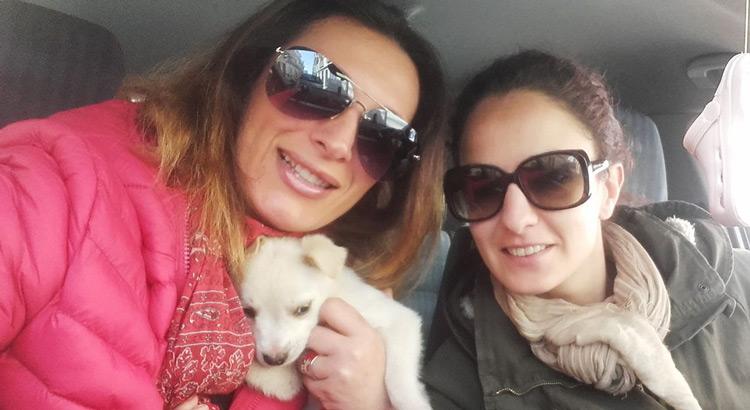 Enza Ardone e Grazia Palazzi