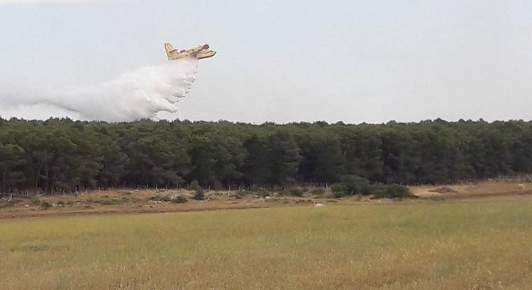 Incendi, a lavoro i volontari de Il Gabbiano