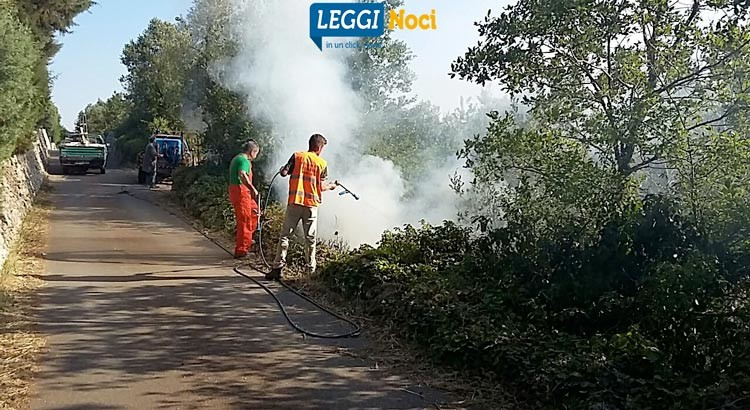 Incendio su via Barsento, bruciano rifiuti