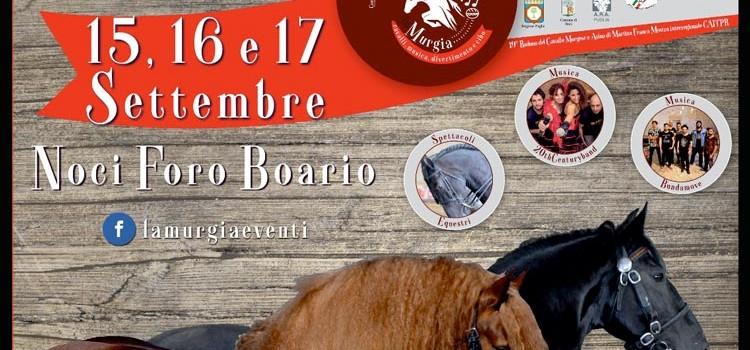 Al Foro Boario il 19° raduno del Cavallo Murgese