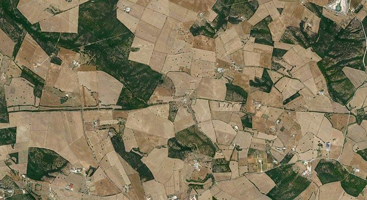 """Il """"Parietone"""" visto in un'immagine satellitare. È la lunga striscia verde orizzontale, interrotto, al centro, dalla Masseria Scozia"""
