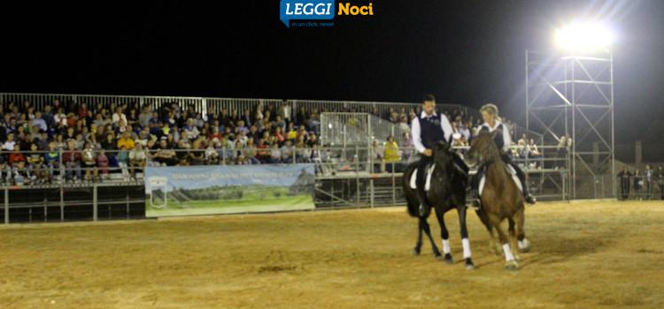 Raduno del Cavallo Murgese: botta e risposta Liuzzi-Nisi