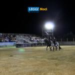 raduno-cavallo-murgese-tricolore