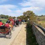 arcm-ippovia-carrozze-strada