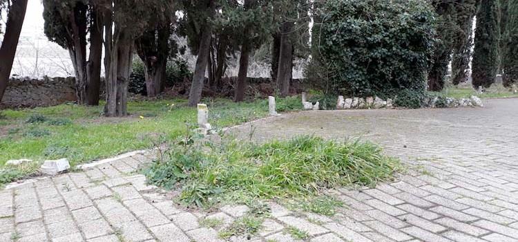 Noci Riparte: riflettori sullo stato di degrado del cimitero comunale