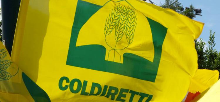 Danni da fauna selvatica, Coldiretti apre uno sportello