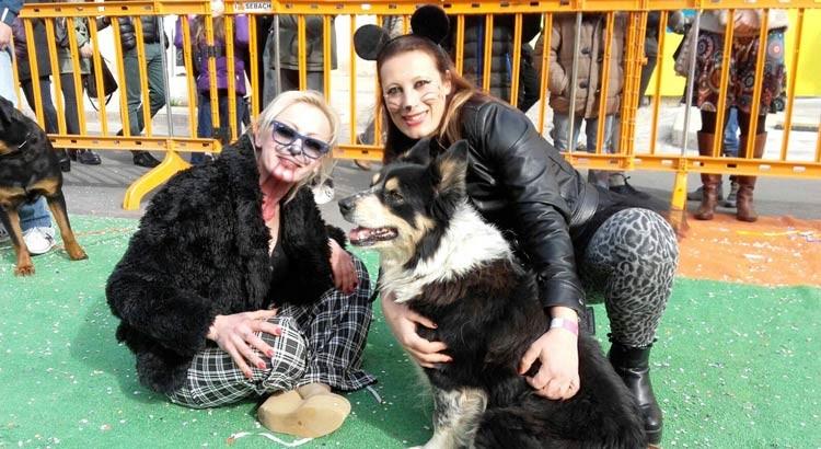 Carnevale di Putignano: una festa anche per i cani