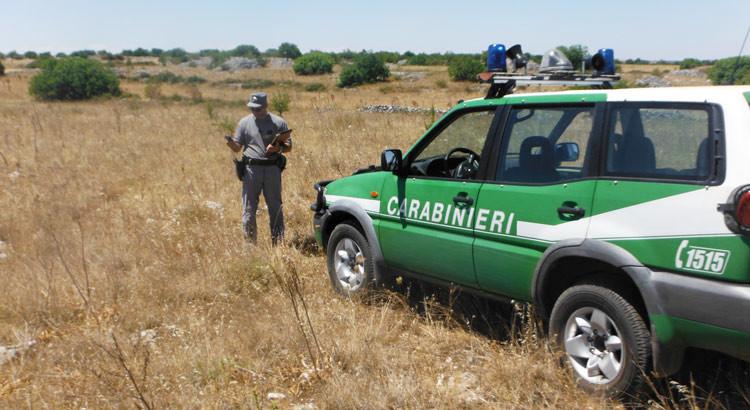 Campagna AIB 2018, l'impegno dei Carabinieri Forestali