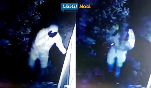 Tentativi di furto in agro, i presunti autori ripresi da un video