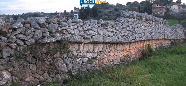 """Muretti a secco patrimonio Unesco, Liuzzi: """"Giusto riconoscimento al Dna del nostro paesaggio"""""""