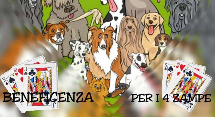 torneo-burraco-cani-4-zampe