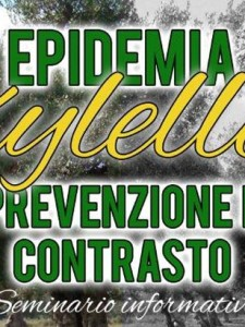 Epidemia Xylella: prevenzione e contrasto
