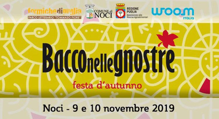 bacco-910-novembre