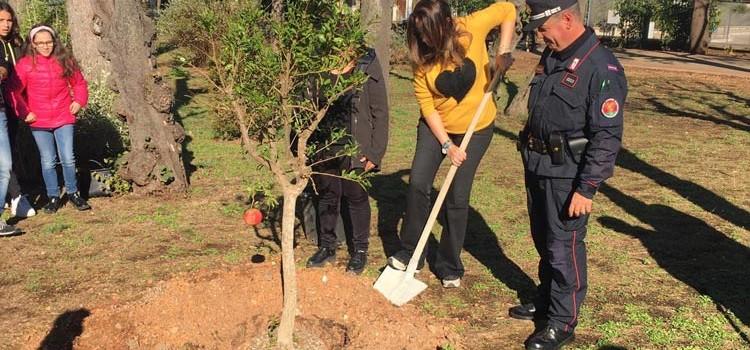 Giornata Nazionale degli Alberi: un nuovo albero piantumato nella Villa Comunale