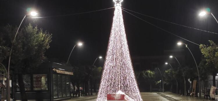 """Confartigianato e Ais Puglia: l'albero di Natale """"non toglie nulla a nessuno, ma aggiunge"""""""