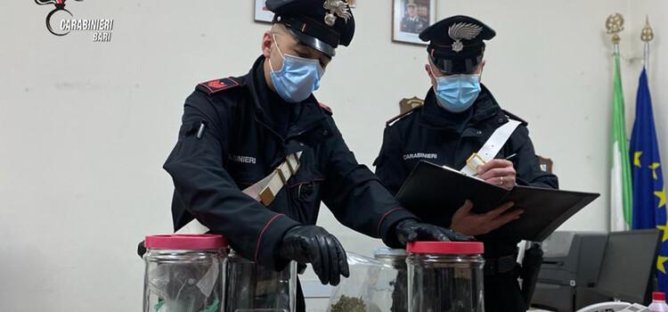 Santeramo in Colle: tenta la fuga ma viene arrestato per spaccio e resistenza al pubblico ufficiale